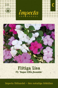 Flitiga Lisa F1 'Super Elfin Seaside'