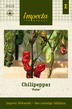 Chilipeppar 'Peter'