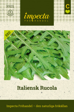 Italiensk Rucola