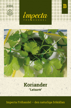 Koriander 'Leisure'