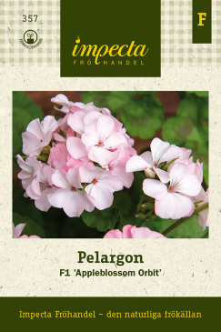 Pelargon F1 'Appleblossom Orbit'