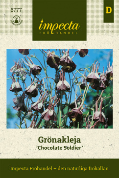 Grönakleja 'Chocolate Soldier'