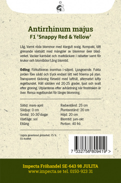 Lejongap F1 'Snappy Red & Yellow'