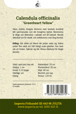 Ringblomma 'Greenheart Yellow'