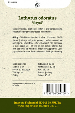 Luktärt 'Royal'