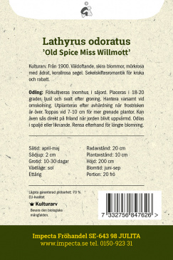 Luktärt 'Old Spice Miss Willmott'