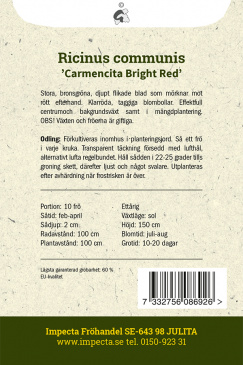 Ricin 'Carmencita Bright Red'