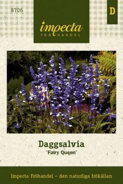 Daggsalvia 'Fairy Queen'