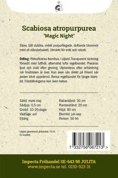 Praktvädd 'Magic Night'