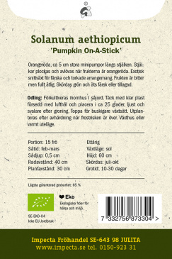 Röd Aubergin 'Pumpkin On-A-Stick'