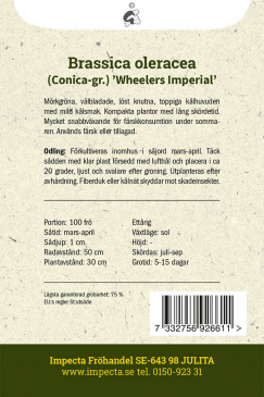 Spetskål 'Wheelers Imperial'