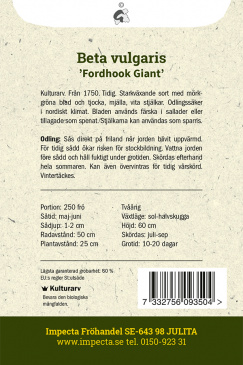 Mangold 'Fordhook Giant'