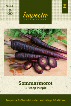 Sommarmorot F1 'Deep Purple'