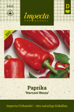 Paprika 'Marconi Rosso'