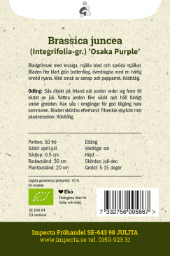 Salladssenap 'Osaka Purple'