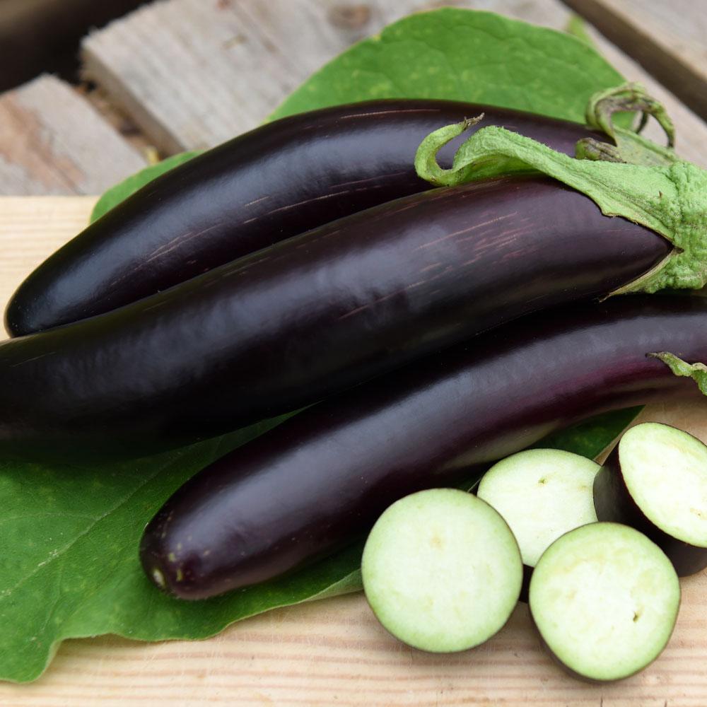 AUBERGIN 'De Barbentane' i gruppen Grönsaksväxter hos Impecta Fröhandel (97940)