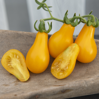 P�RONTOMAT 'Yellow Pearshaped'