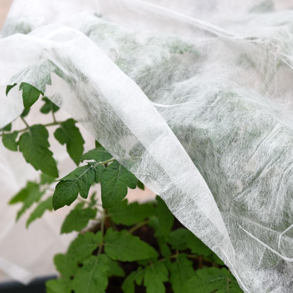Välkända Fiberduk | Växtskydd | TW-96