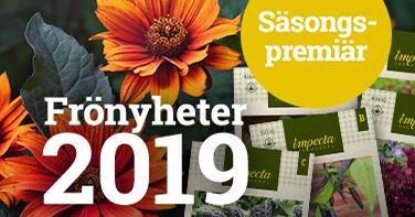 Frönyheter 2019.