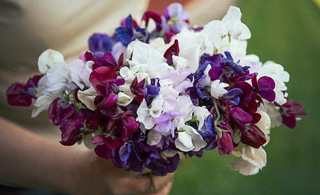 samle en hel neve med blomster, og gjør de til vakre buketter.
