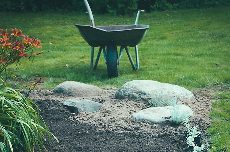 Höstgräva eller vårgräva
