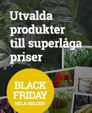 Utvalda produkter till superlåga priser