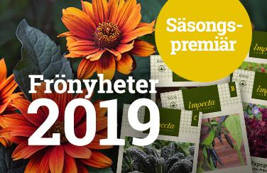 Frönyheter 2019