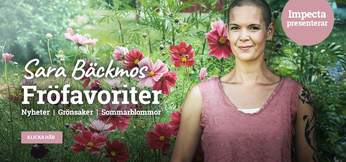 Sara Bäckmos favoriter