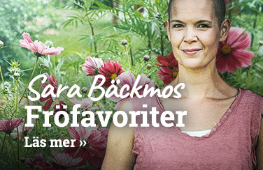 Sara Bäckmos favoriter