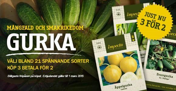 Gurka - Köp 3 betala för 2