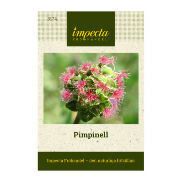 Pimpinell