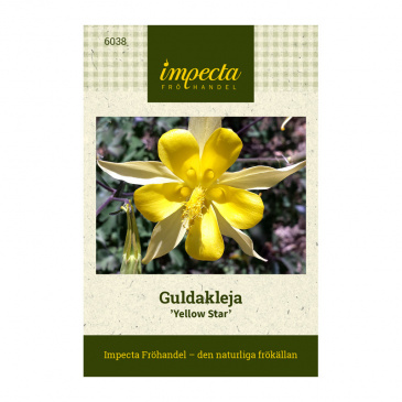Guldakleja 'Yellow Star'
