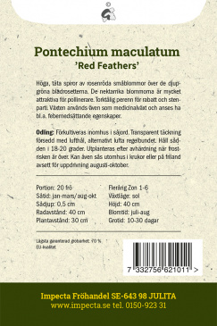 Röd Snokört 'Red Feathers'