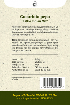 Prydnadspumpa 'Little Indian Mix'