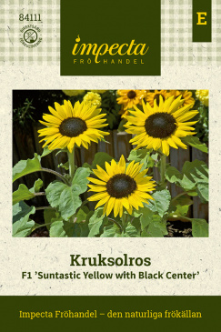 Kruksolros F1 Suntastic Yellow with Black Center fröpåse Impecta