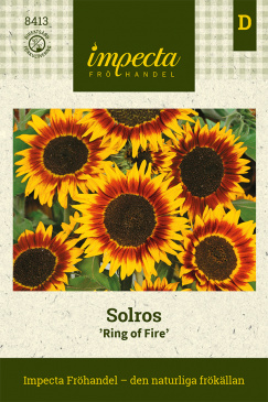 Solros 'Ring Of Fire'