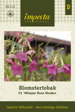 Blomstertobak F1 'Whisper Rose Shades'