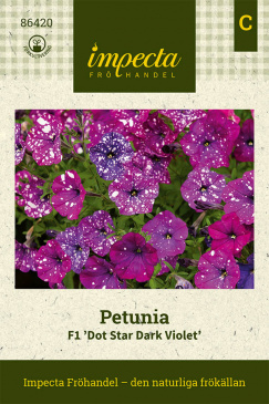 Petunia F1 'Dot Star Dark Violet' fröpåse Impecta