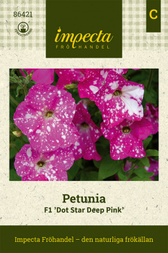 Petunia F1 'Dot Star Deep Pink' fröpåse Impecta
