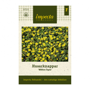 Husarknappar 'Million Suns'