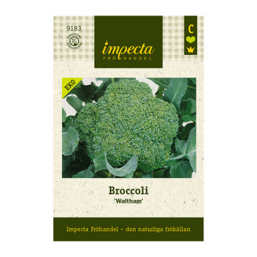 Broccoli 'Waltham'
