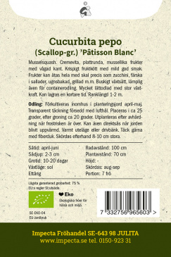 Musselsquash Custard White fröpåse balksida Impecta